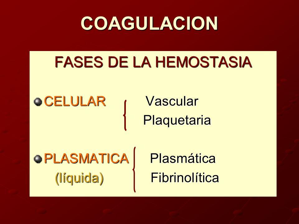 COAGULACION FASES DE LA HEMOSTASIA CELULAR Vascular Plaquetaria