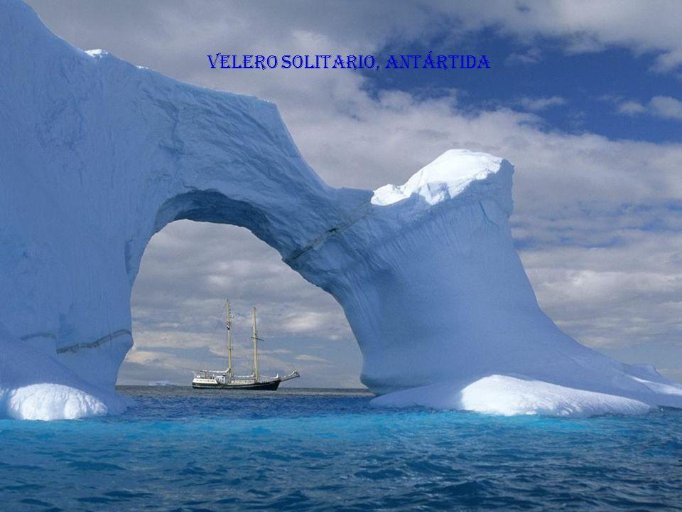 Velero solitario, Antártida