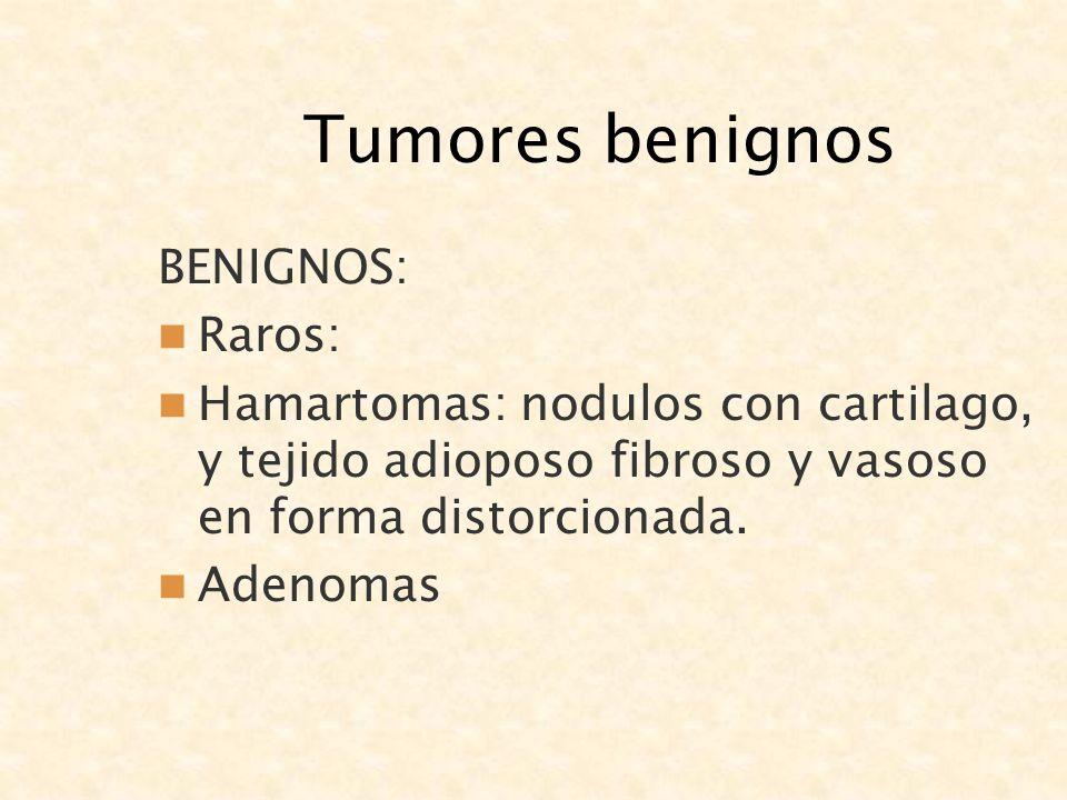 Tumores benignos BENIGNOS: Raros: