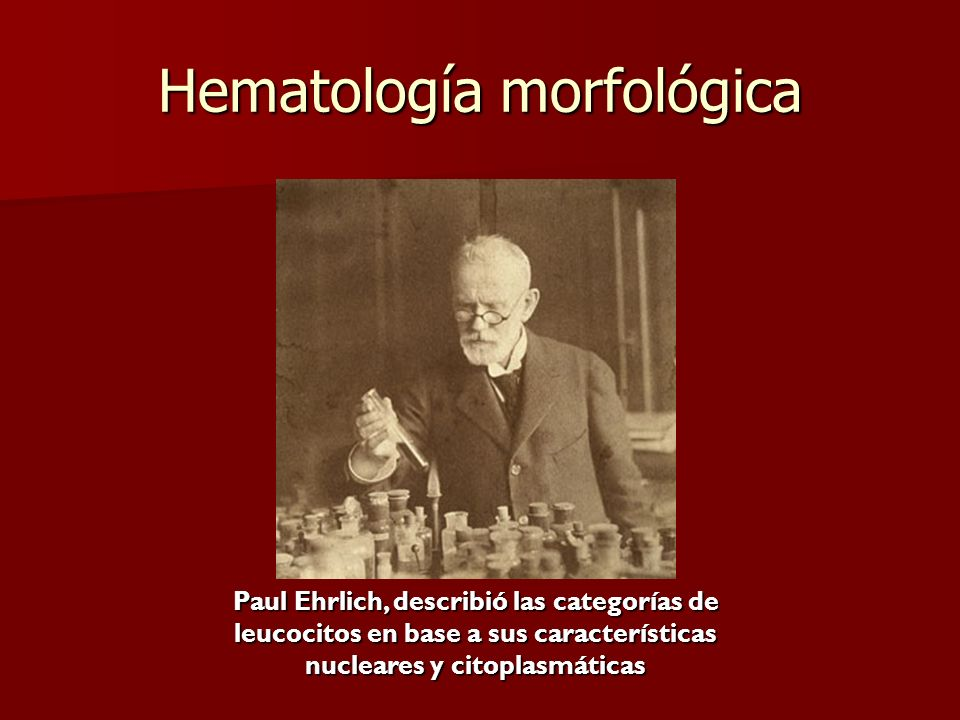 Hematología morfológica