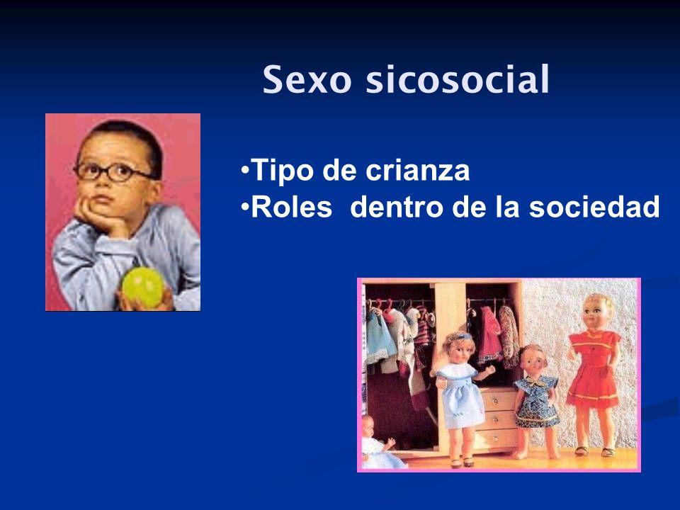Sexo sicosocial Tipo de crianza Roles dentro de la sociedad