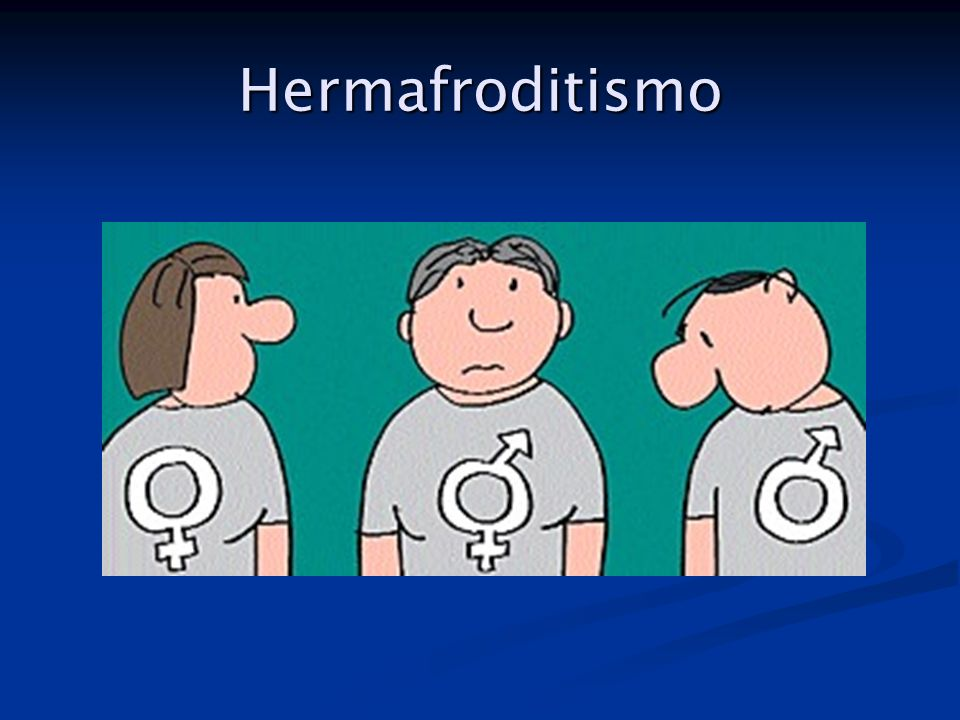Hermafroditismo