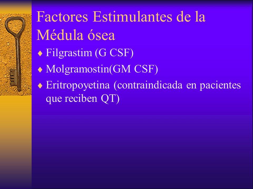 Factores Estimulantes de la Médula ósea