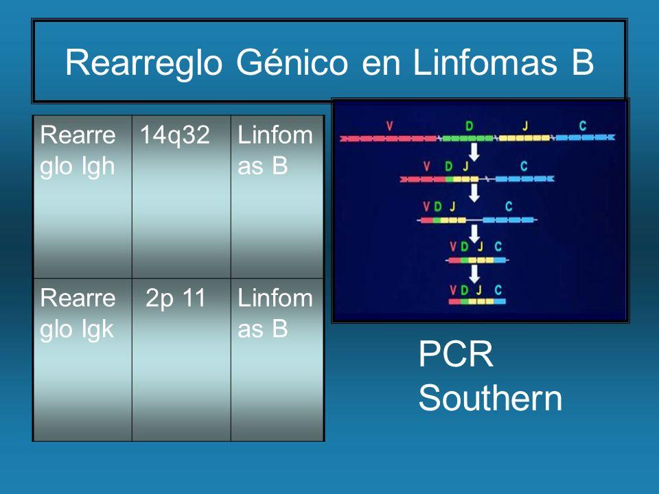 Rearreglo Génico en Linfomas B