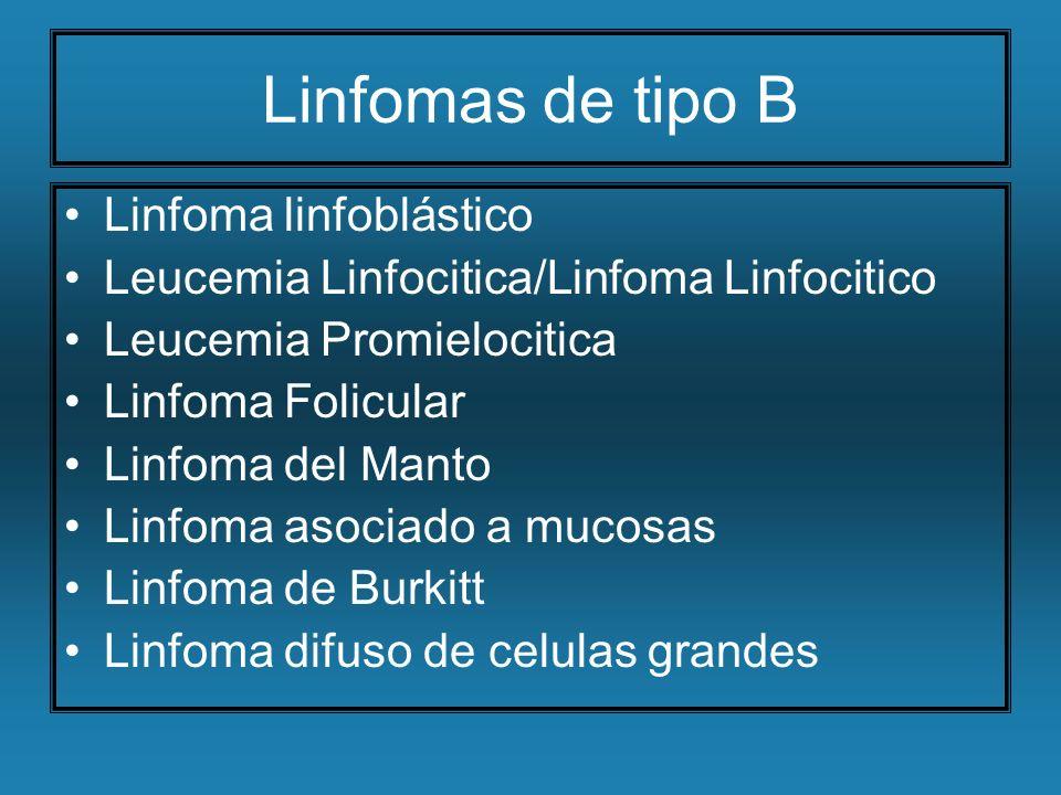 Linfomas de tipo B Linfoma linfoblástico