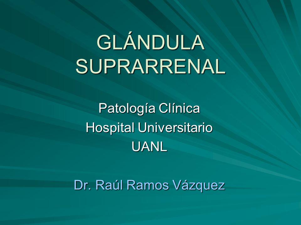 Patología Clínica Hospital Universitario UANL Dr. Raúl Ramos Vázquez