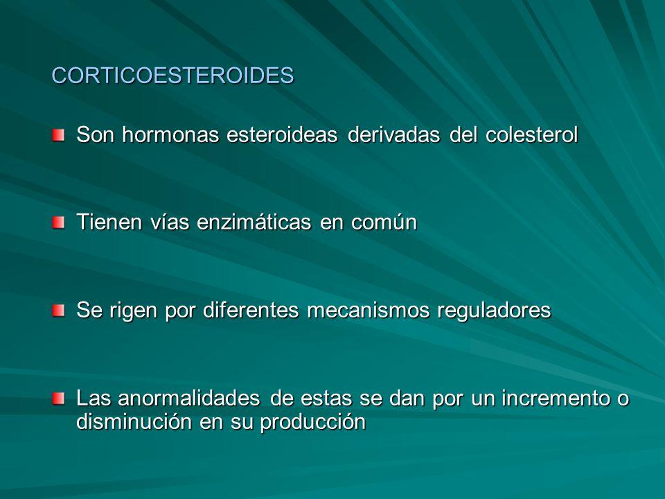 CORTICOESTEROIDES Son hormonas esteroideas derivadas del colesterol. Tienen vías enzimáticas en común.