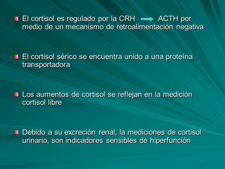 El cortisol es regulado por la CRH ACTH por medio de un mecanismo de retroalimentación negativa