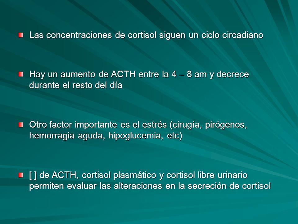 Las concentraciones de cortisol siguen un ciclo circadiano