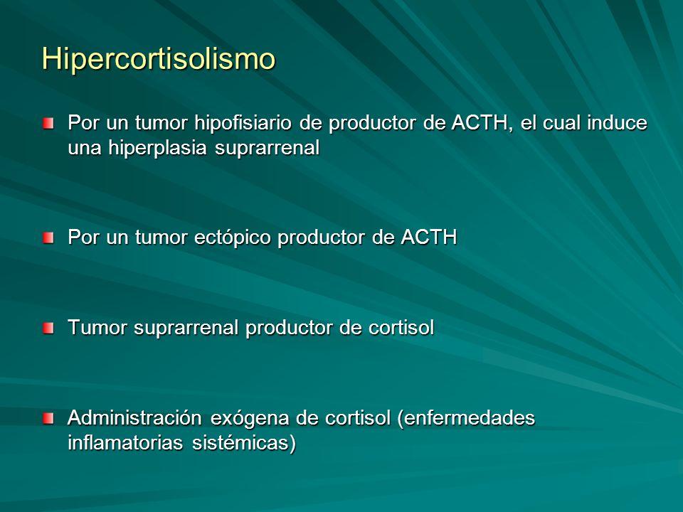 Hipercortisolismo Por un tumor hipofisiario de productor de ACTH, el cual induce una hiperplasia suprarrenal.