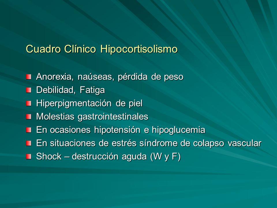 Cuadro Clínico Hipocortisolismo
