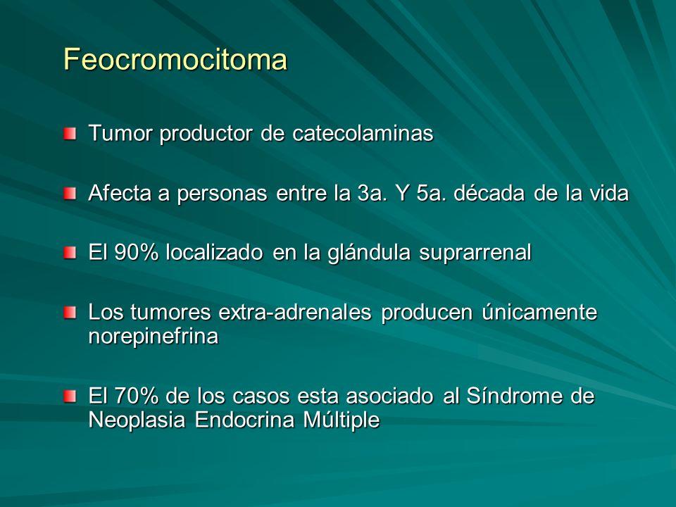 Feocromocitoma Tumor productor de catecolaminas