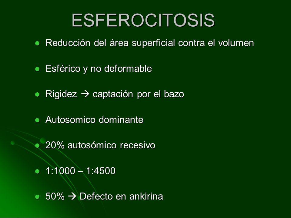 ESFEROCITOSIS Reducción del área superficial contra el volumen