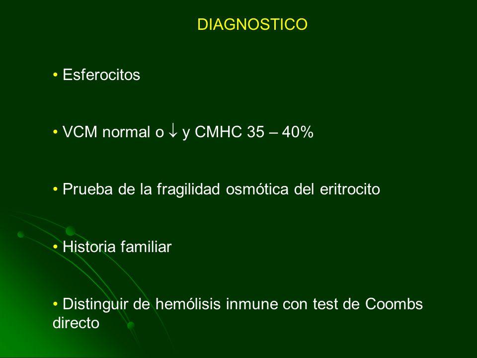 DIAGNOSTICO Esferocitos. VCM normal o  y CMHC 35 – 40% Prueba de la fragilidad osmótica del eritrocito.