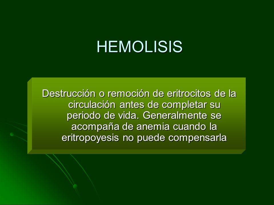 HEMOLISIS