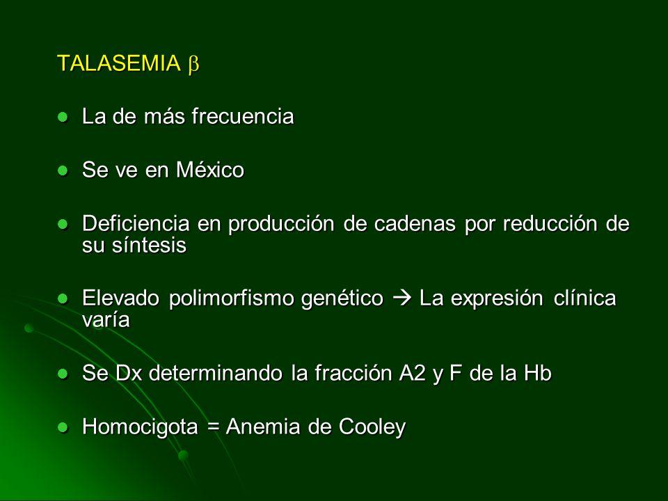 TALASEMIA  La de más frecuencia. Se ve en México. Deficiencia en producción de cadenas por reducción de su síntesis.