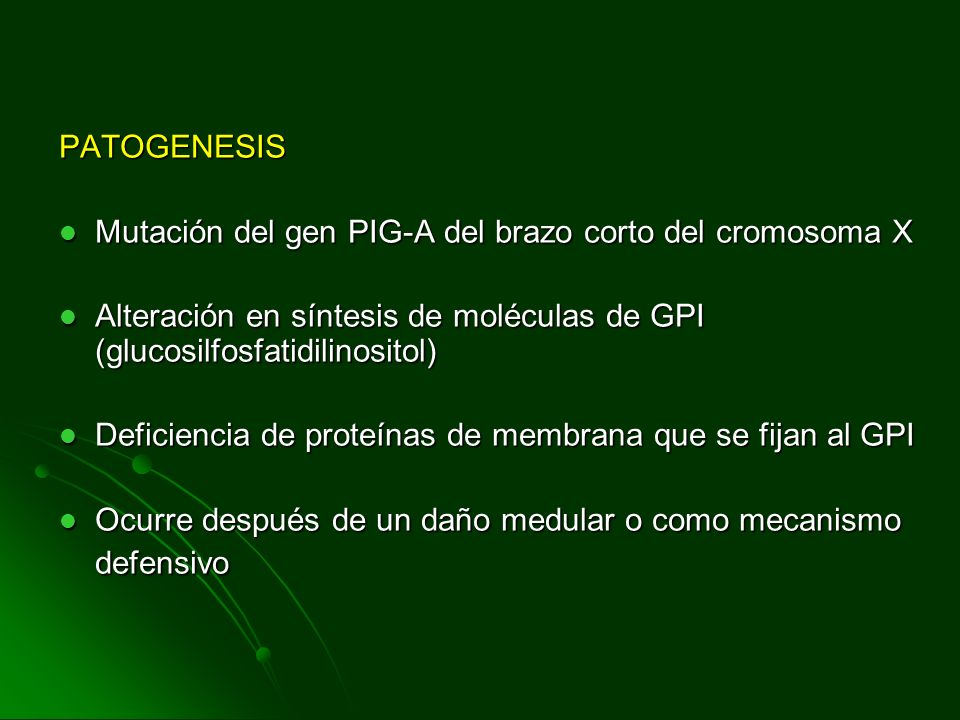 PATOGENESIS Mutación del gen PIG-A del brazo corto del cromosoma X. Alteración en síntesis de moléculas de GPI (glucosilfosfatidilinositol)