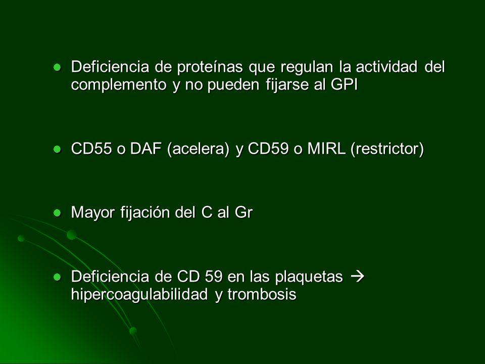 Deficiencia de proteínas que regulan la actividad del complemento y no pueden fijarse al GPI