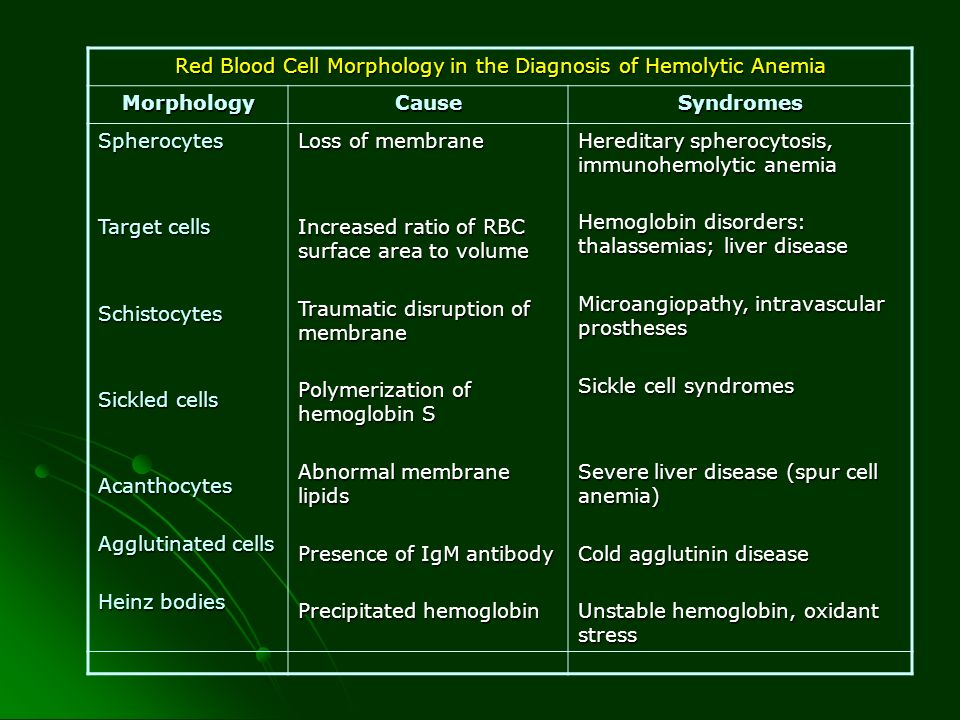 Red Blood Cell Morphology in the Diagnosis of Hemolytic Anemia