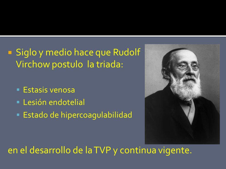 Siglo y medio hace que Rudolf Virchow postulo la triada:
