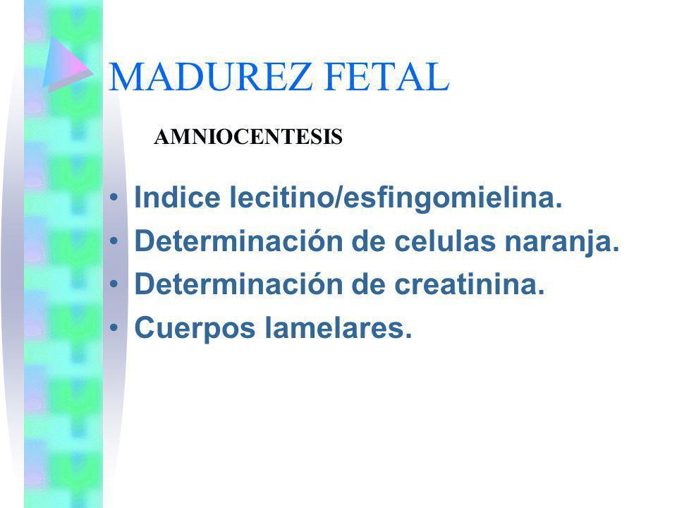 MADUREZ FETAL Indice lecitino/esfingomielina.
