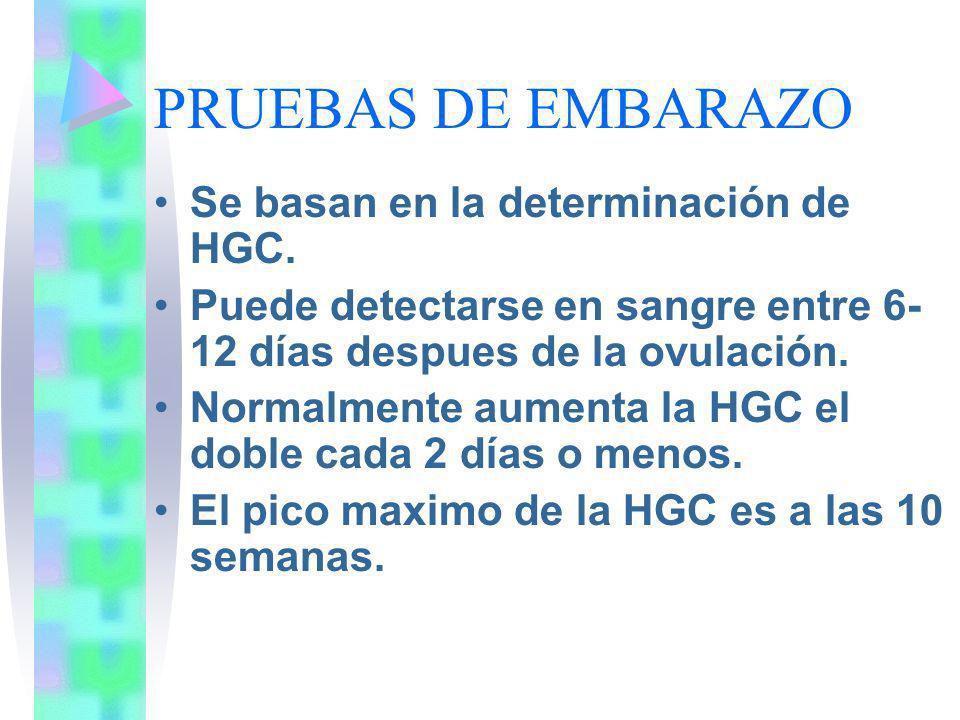 PRUEBAS DE EMBARAZO Se basan en la determinación de HGC.