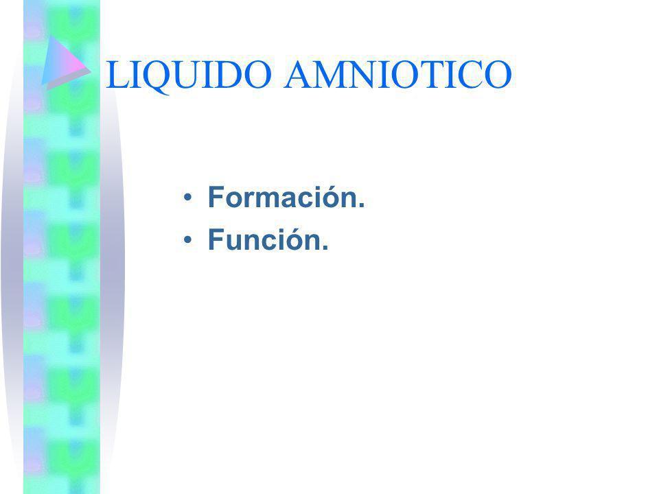 LIQUIDO AMNIOTICO Formación. Función.