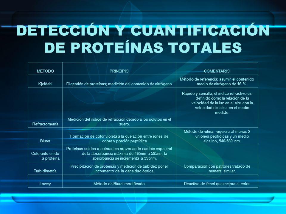 DETECCIÓN Y CUANTIFICACIÓN DE PROTEÍNAS TOTALES