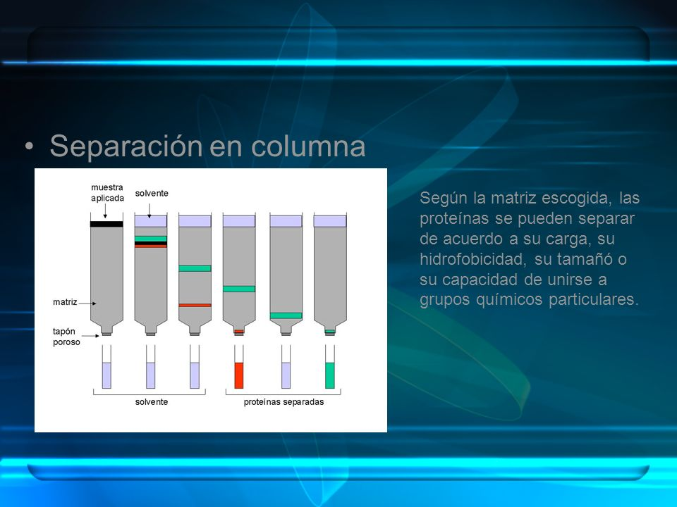 Separación en columna