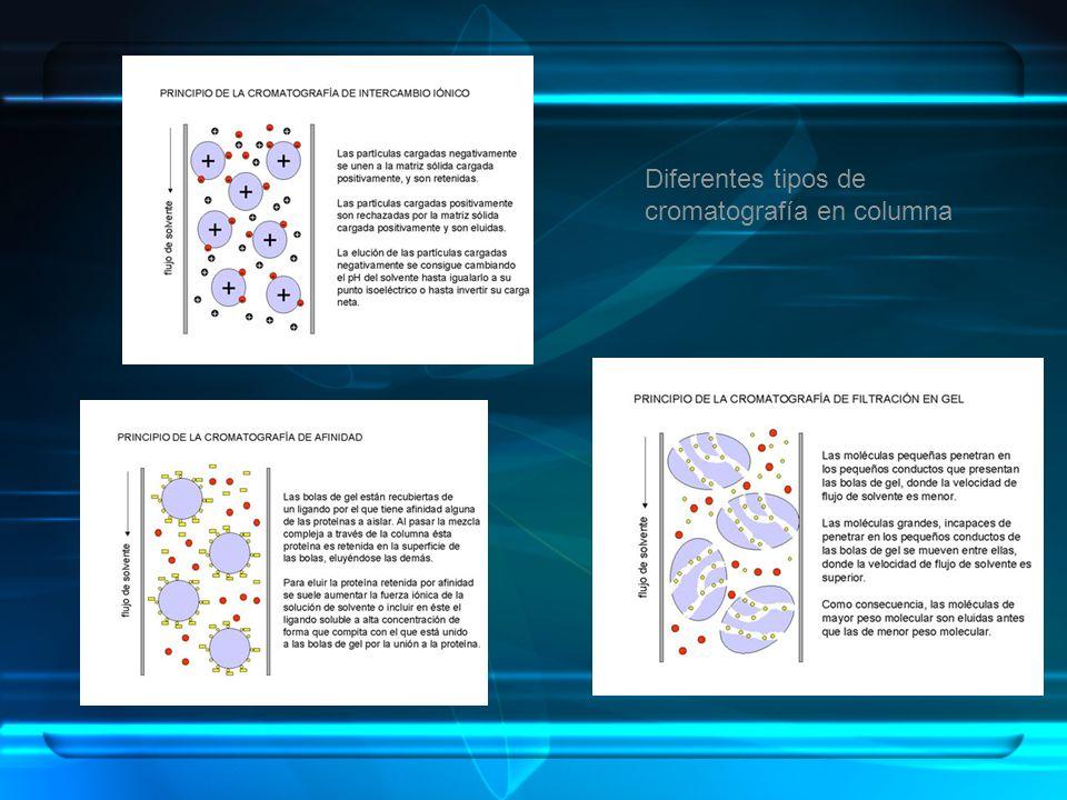 Diferentes tipos de cromatografía en columna