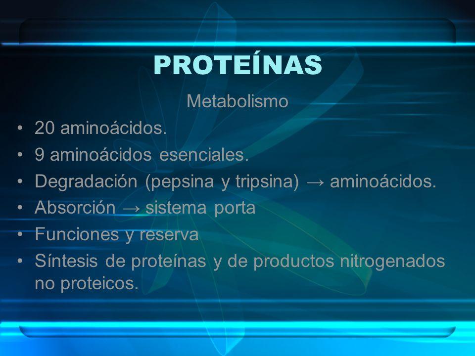 PROTEÍNAS Metabolismo 20 aminoácidos. 9 aminoácidos esenciales.