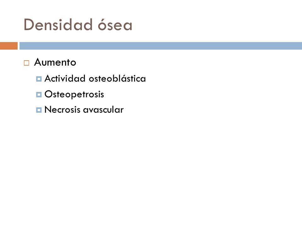 Densidad ósea Aumento Actividad osteoblástica Osteopetrosis