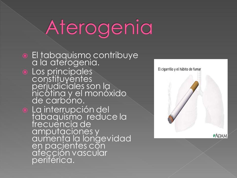 Aterogenia El tabaquismo contribuye a la aterogenia.