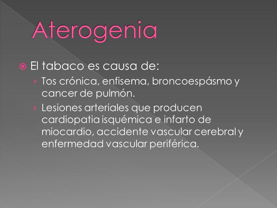 Aterogenia El tabaco es causa de: