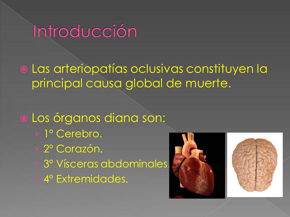 Introducción Las arteriopatías oclusivas constituyen la principal causa global de muerte. Los órganos diana son: