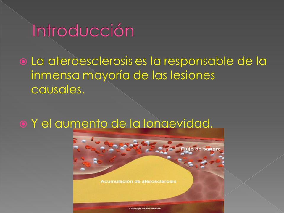 Introducción La ateroesclerosis es la responsable de la inmensa mayoría de las lesiones causales.