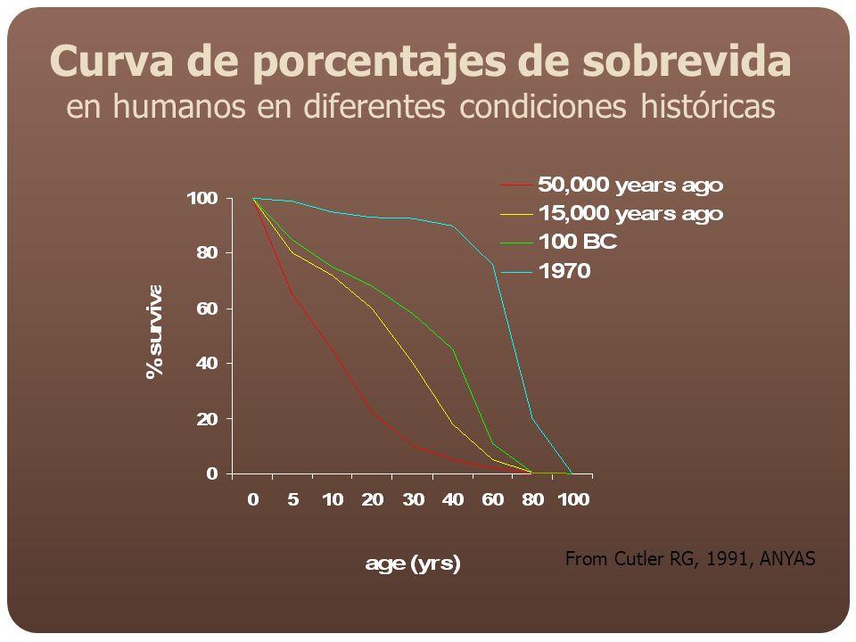 Curva de porcentajes de sobrevida