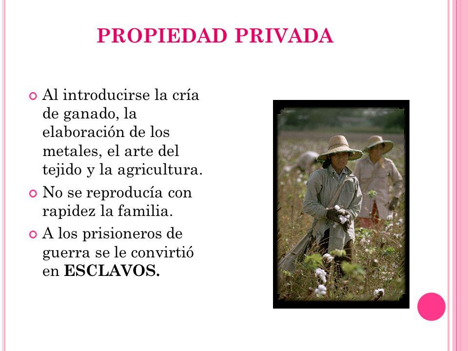 PROPIEDAD PRIVADA Al introducirse la cría de ganado, la elaboración de los metales, el arte del tejido y la agricultura.