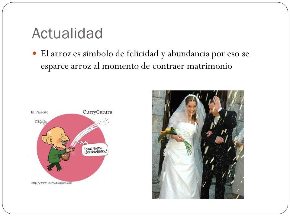 ActualidadEl arroz es símbolo de felicidad y abundancia por eso se esparce arroz al momento de contraer matrimonio.