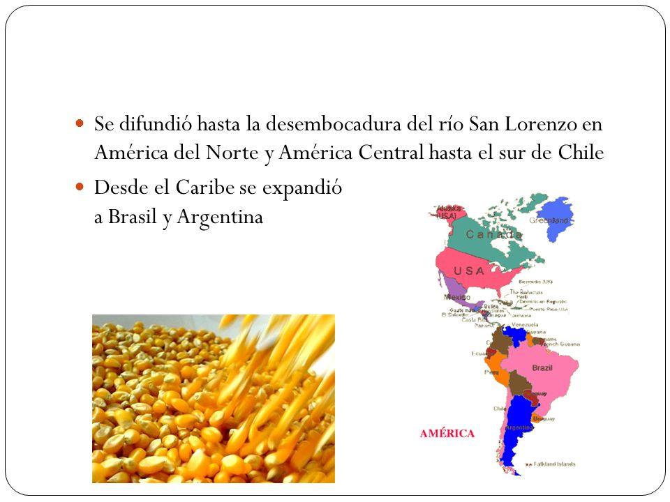 Se difundió hasta la desembocadura del río San Lorenzo en América del Norte y América Central hasta el sur de Chile