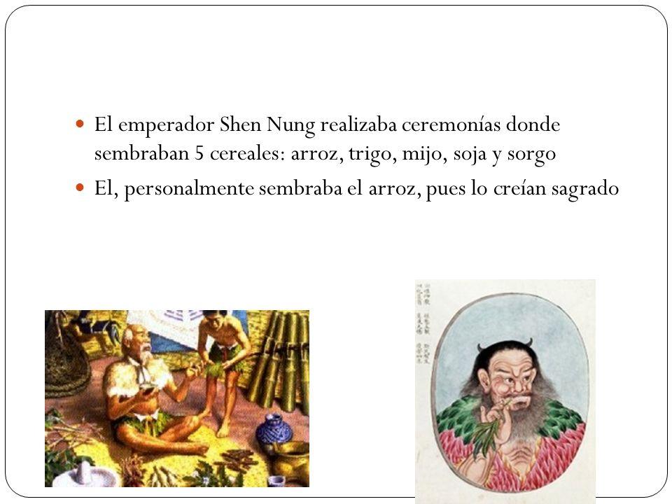 El emperador Shen Nung realizaba ceremonías donde sembraban 5 cereales: arroz, trigo, mijo, soja y sorgo