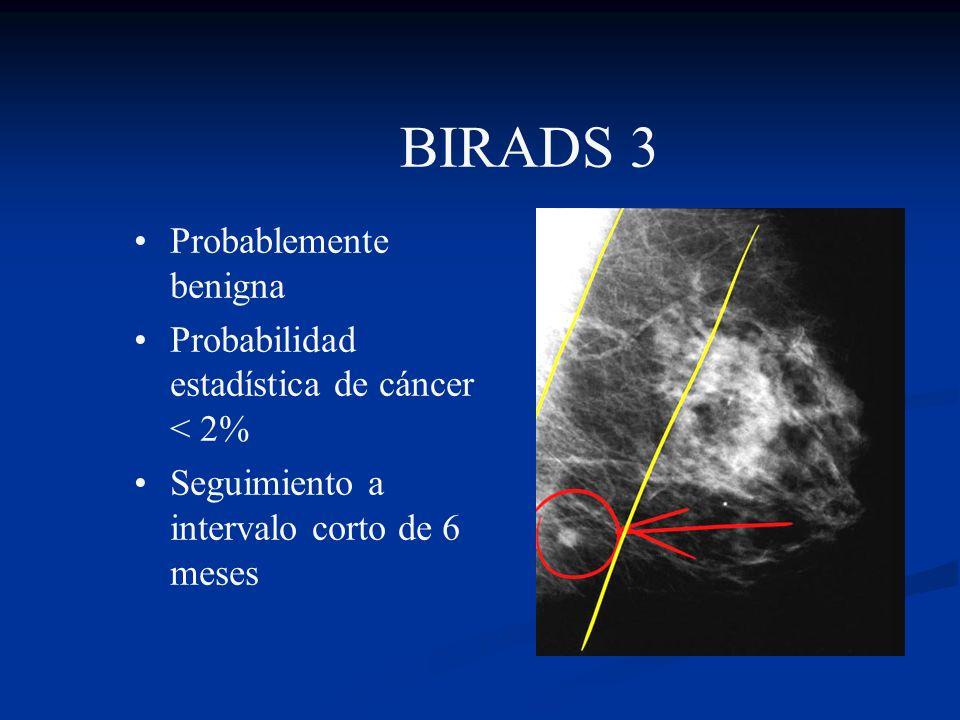 BIRADS 3 Probablemente benigna