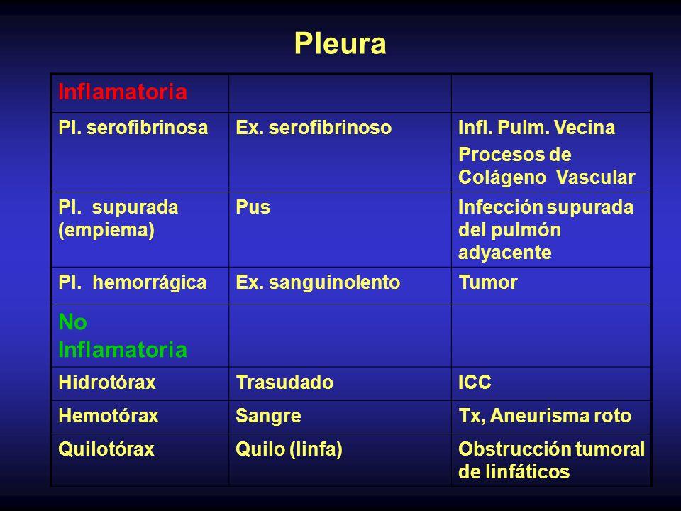 Pleura Inflamatoria No Inflamatoria Pl. serofibrinosa