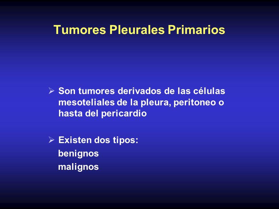 Tumores Pleurales Primarios