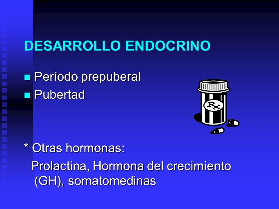 DESARROLLO ENDOCRINO Período prepuberal Pubertad * Otras hormonas: