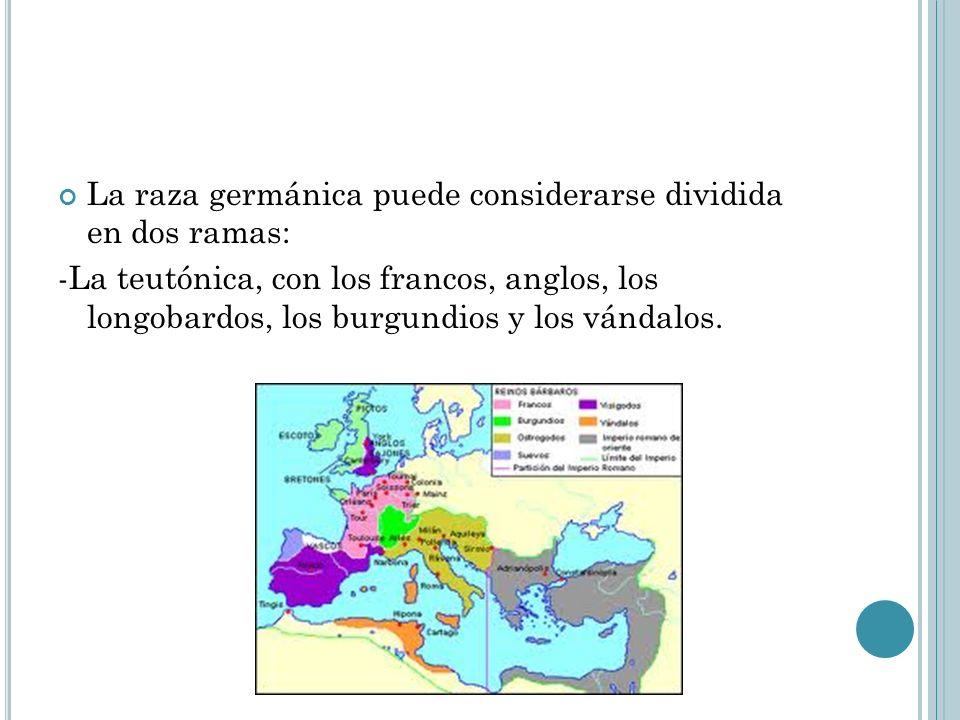 La raza germánica puede considerarse dividida en dos ramas: