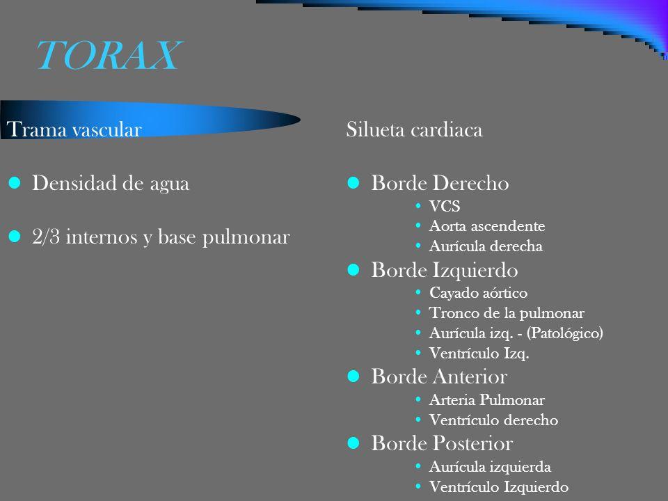 TORAX Trama vascular Densidad de agua 2/3 internos y base pulmonar