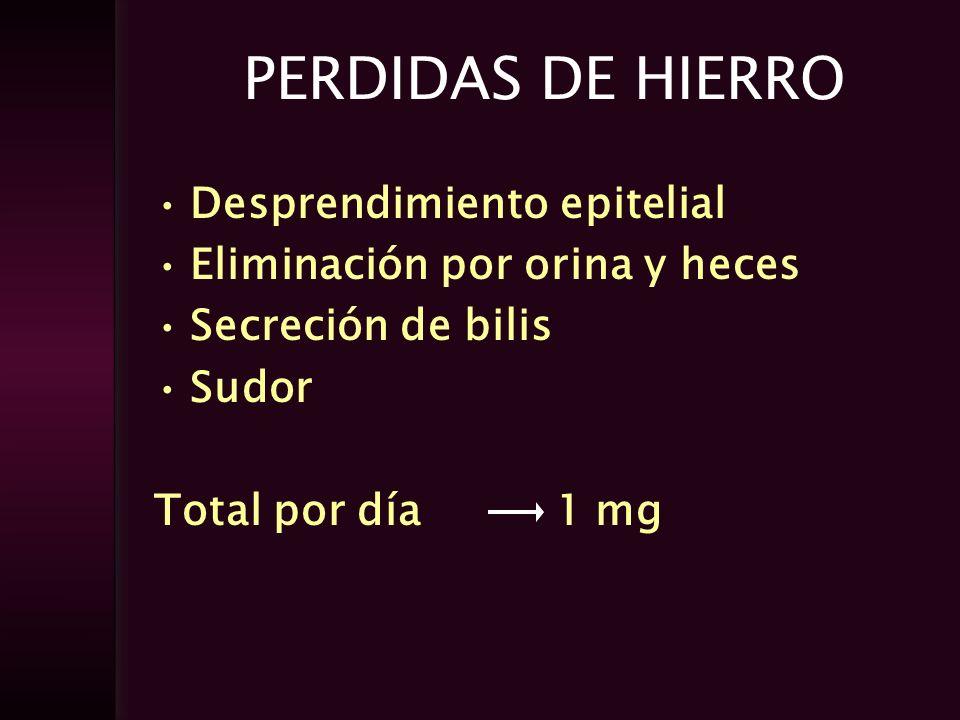 PERDIDAS DE HIERRO Desprendimiento epitelial