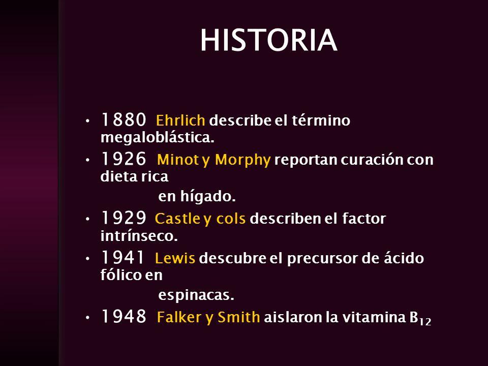 HISTORIA 1880 Ehrlich describe el término megaloblástica.