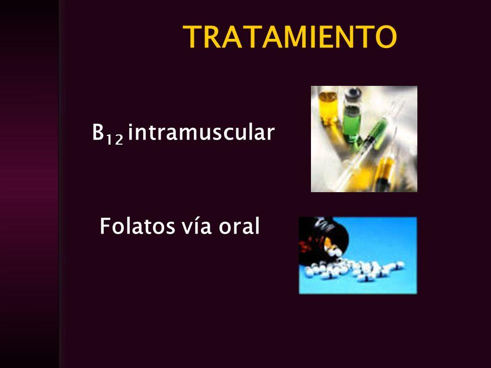 TRATAMIENTO B12 intramuscular Folatos vía oral